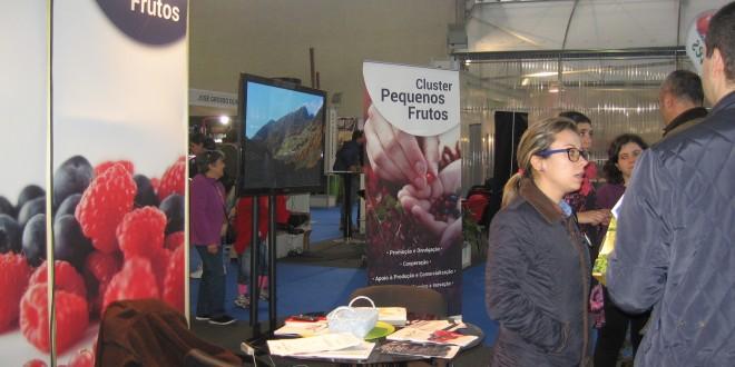 Agim marcou presença na Frutitec/Hortitec