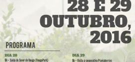 Visita técnica da cultura do mirtilo às Astúrias