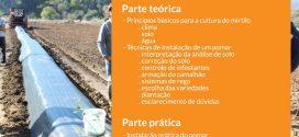 Formação prática de instalação de pomar de mirtilos em Almada e Sever do Vouga