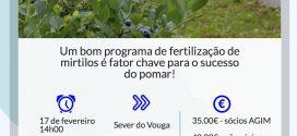 Formação prática sobre fertilização de mirtilos