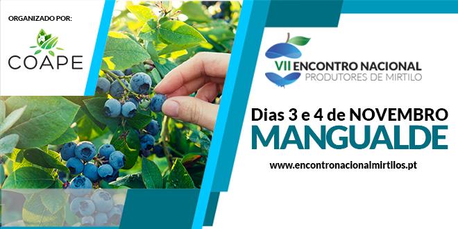 Encontro Nacional de Produtores de Mirtilos realiza-se em Mangualde a 3 e 4 de novembro
