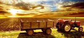 Pequenos Investimentos na Exploração Agrícola – candidaturas abertas