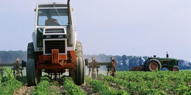 Pequenos Investimentos na Exploração Agrícola: candidaturas abertas na área da ADRITEM